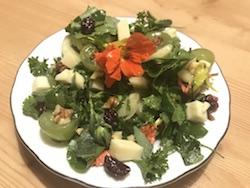 szofia salata sajat