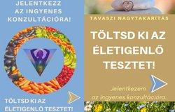 toltsd_ki_az_eletigenlo_tesztet