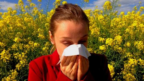 Hogyan szabadulj meg az allergiádtól?